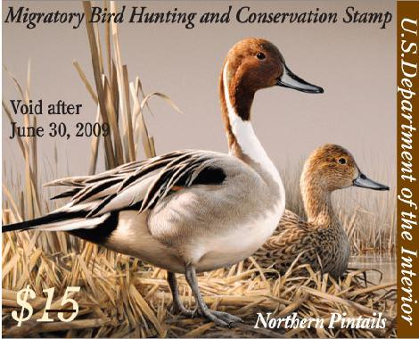 75th-anniversary-federal-duck-stamp